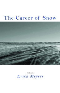 The Career of Snow