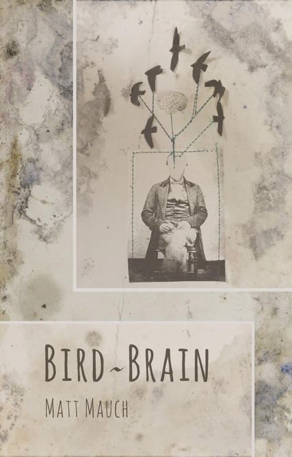 Cover_Bird_Brain